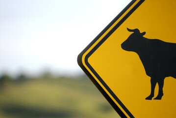 Cow's Crossing: A Monologue